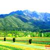 Kashmiri sufiyana songs