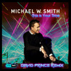 Michael Smith - This is your time (David Prince Remix) (Prize Tools Recordings ®)