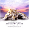 Spirits On Earth - Valentin Boomes & Ivan Torrent