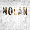 Nolan - Learn To Fly (Foo Fighters) - St. Thomas Aquinas Secondary School