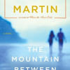 The Mountain Between Us by Charles Martin, read by George Newbern