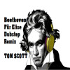 Beethoven - Fur elise Dubstep Remix