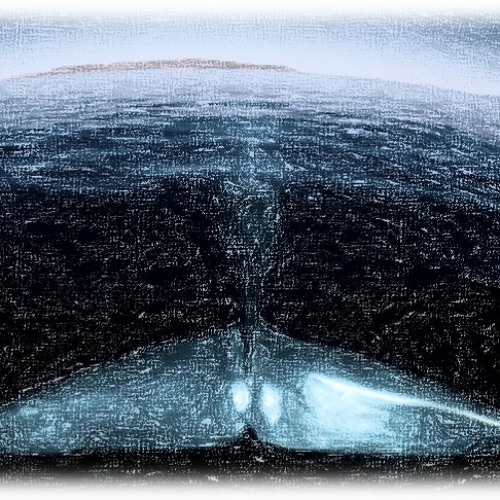 On The Fringe Of A Whale's Tail