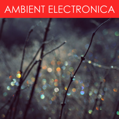 Evolve (ambient electronica)
