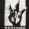 Ice cube feat Dr Dre and Tupac - Westside Monster (Remix)