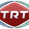 TRT Kent Radyolarının konuğu Özer Türer mp3
