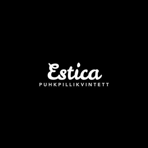 Estica's concert in July 2014 in Pühalepa Church, Hiiumaa, Estonia