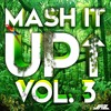 Mash It Up Vol.3 (Mixed by Taccers!)