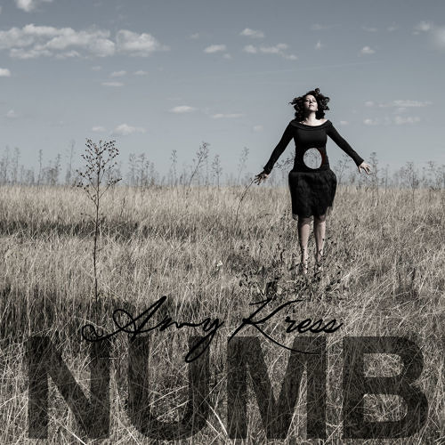 Numb Remix Contest Winners
