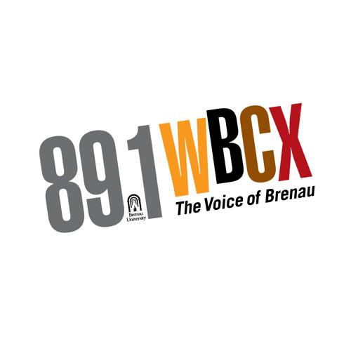WBCX Interviews Author Victoria Wilcox March 2, 2015