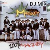 Banda Maguey mix que yo use