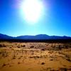 Trought The Desert