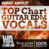 W. A. Production - What About Top Chart Guitar EDM Vocals Preview