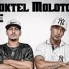 Coktel Molotov - Casa 33 (soundcloud.com/djwrpoficial) Portada del disco