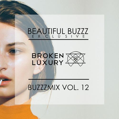 BUZZZMIX Vol. 12 - BROKEN LUXURY