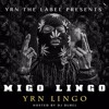 Migos - Falisha Ft. Rich Homie Quan (Migo lingo mixtape DOWNLOAD)