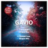 Gavio Dirty Rain & Midnight Fever. Teaser. Istanbul Records