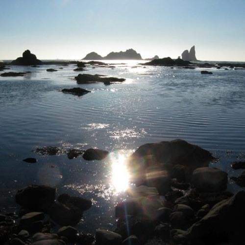 Pacific Northwest Coast - Cove Scene