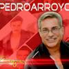 ARTISTA PEDRO ARROYO PUERTO RICO