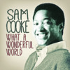 Sam Cooke - What A Wonderful World (Ukulele Cover)