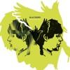Black Bird (The Beatles Cover) w/ Prass Himawan