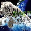 Love Dose - Yo Yo Honey Singh (Full Video Song) (HD 720p)