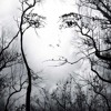 Illusion------FREE DOWNLOAD