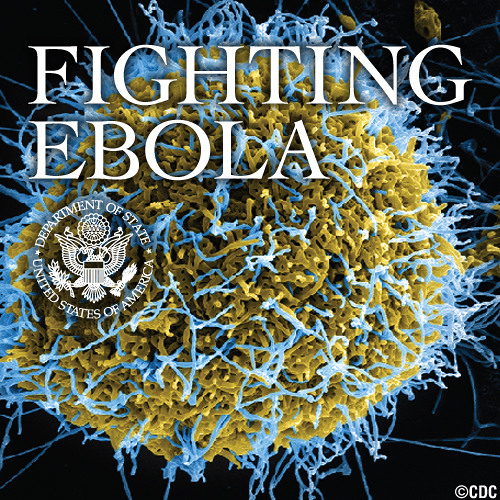 Fighting Ebola: The Critical Need for Healthcare Workers