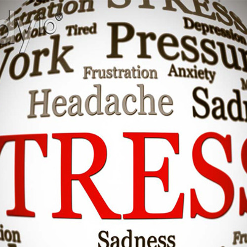 HERBODY 03 - Stress - Effects and Management