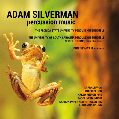 Percussion Music [CD]