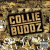 Blind To You (Collie Buddz) - HitFiend Remix - Out Now On TFA 001
