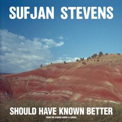 """Sufjan Stevens, """"Should Have Known Better"""""""