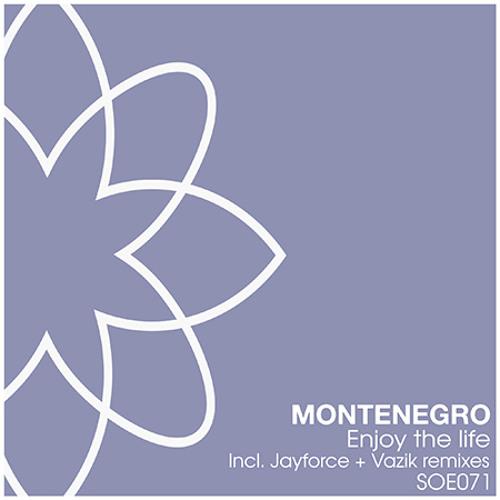 Montenegro - Enjoy The Life (Vazik Remix) [Sounds of Earth]