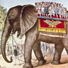 A fond farewell to circus elephants; then what the circus looks like now