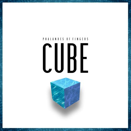 Phalanxes of fingers - Cube