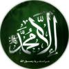 الشيخ عبدالله كامل