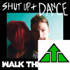Shut Up and Dance (Walk the Moon Acoustic Cover)
