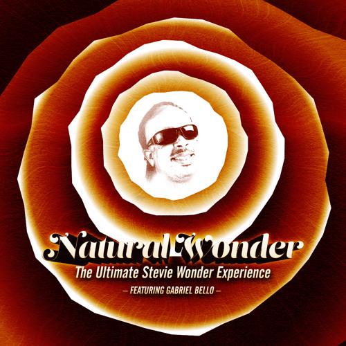 Natural Wonder Stevie Wonder Tribute Superstition Live At The Fillmore NC