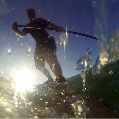 Early morning bird and paddle sounds at Upper Bartons Creek