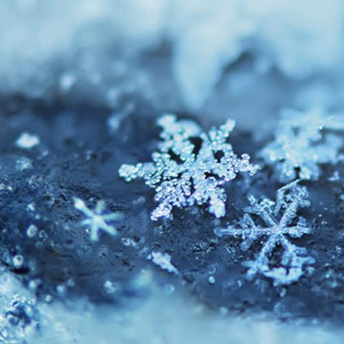 Winter Wonderland 「StrawbellyCake & Daniel Fischer」