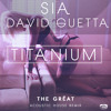 Sia feat David Guetta - Titanium - Freyah Martell - Acoustic House Remix mp3