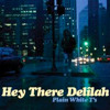 Hey There Delilah - Plain White T's (cover)(2014)