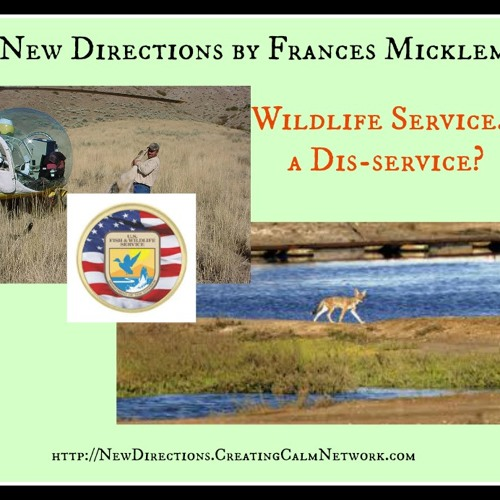 New Directions with Frances Micklem - Is the US Wildlife Service a Dis-Service?