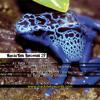 Keja - Grenouilles Plouf - MackiTek Records 29