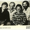 """The Buckaroos - Live Rehearsal """"By The Time I Get To Phoenix"""" (Instrumental)"""