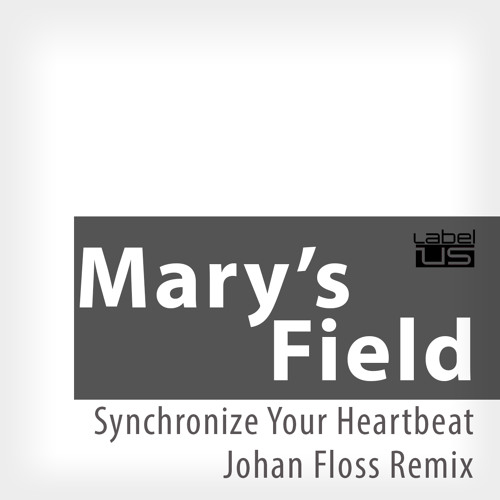 Mary`s Field - Synchronize Your Heartbeat (Johan Floss Remix)