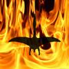 Quetzalcoatl Emerges