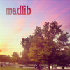 Madlib - What A Day (unreleased)