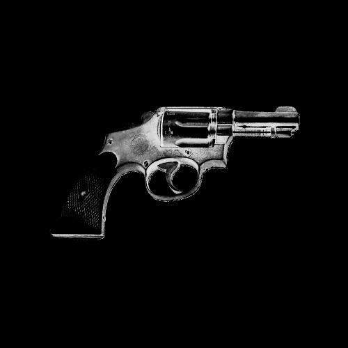House of Gun
