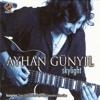 Ayhan Günyıl - Skylight 2014